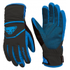 Dynafit Mercury Dynastretch Gloves