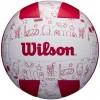 Wilson AVP Seasonal Summer Voleibol
